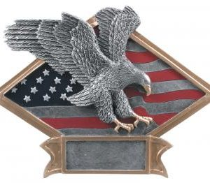 Diamond Resin Eagle Plate Available in 2 sizes