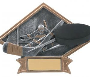 Diamond Resin Hockey Plate Available in 2 sizes