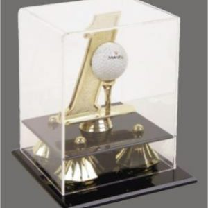 Hole In One Golf Ball Display Case